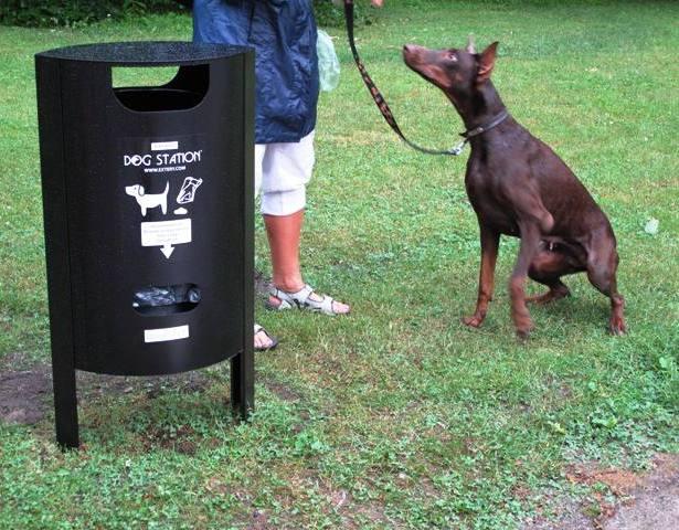 La fotografia mostra un contenitore per deiezioni canine M5, completo di dispenser sacchetti, in un parco cittadino.