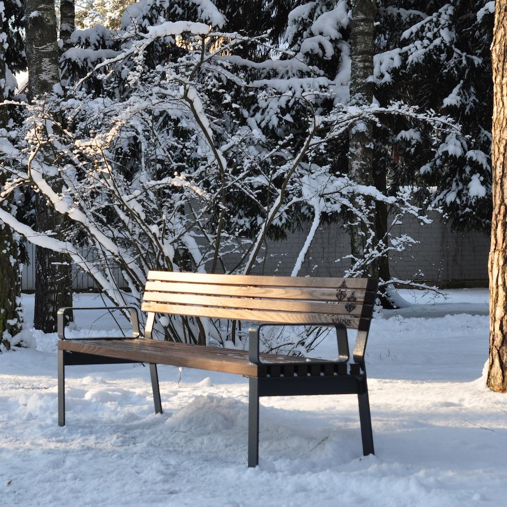 La fotografia mostra una panchina della serie prima in un parco cittadino.